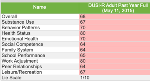 Screenshot of Drug Use Screening Inventory Summary Data