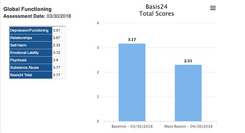 Screenshot of monitoring client progress with BASIS-24